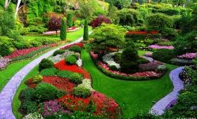Ideas creativas para tu jardin